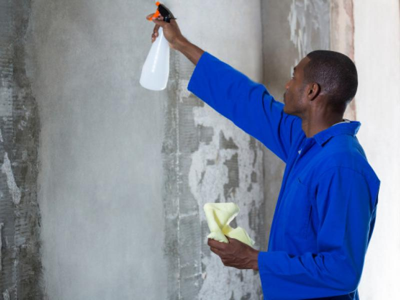 man-doing-pest-control-wall_107420-29733.jpg